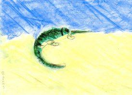 mohammad_Alnaddaff_krokodil