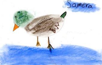 samera_al_khafage_ente